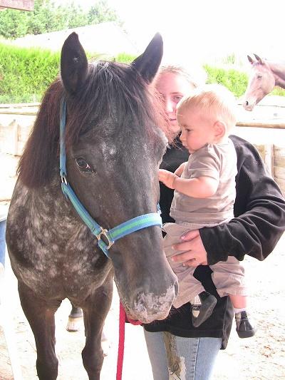 équitation-2008-jvc-jevouschouchoute