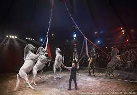 center parcs cirque alexis gruss chevaux rond
