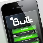 bull2014022256