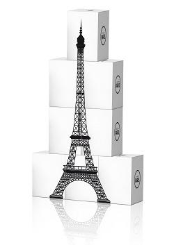 MADE IN PARIS_ VilledeParis_tourEiffel2bonne