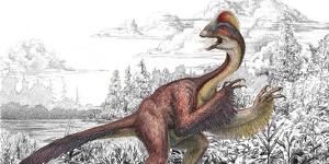 jvc dinosaure 2014 03 21111
