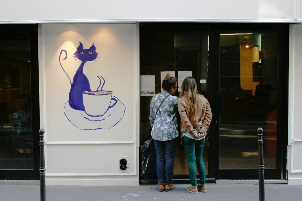 Bar à chats JVC jevouschouchoute plaisir