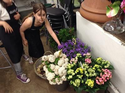 aquarelle jevouschouchoute choix fleurs