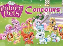 concours-palace-pets