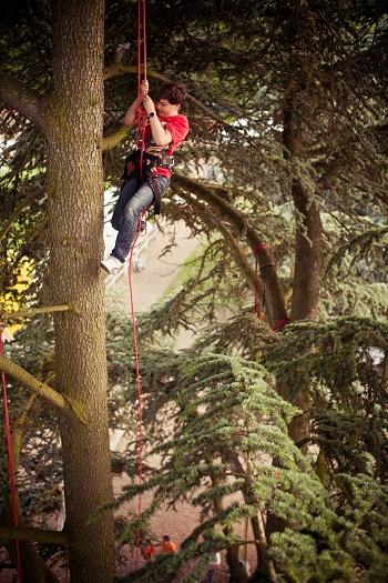 air_Grimpe arbres - Credit Morgane Launey_jevouschouchoute_jvc