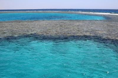 jevouschouchoute_jvc_carret_martine-egypte-reci-corallie-redsea