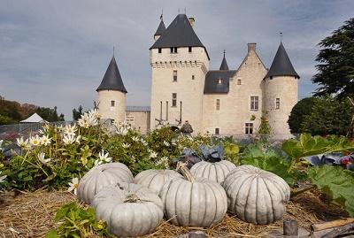 Blue pumpkins.9192.-®ChateauduRivau-jevouschouchoute-jvc