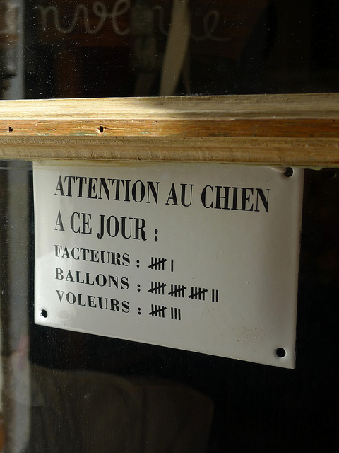 attention au chien JVC jevouschouchoute