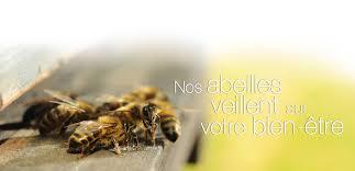 ballotflurin_jevouschouchoute_jvc_abeilles