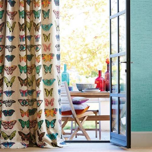 papillon-harlequin-papierpeint-jvc-jevouschouchoute