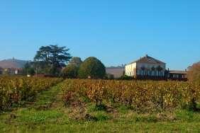 vins-chateaudesbachelars-jvc-jevouschouchoute