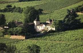 vins-chateauthivin-jvc-jevouschouchoute