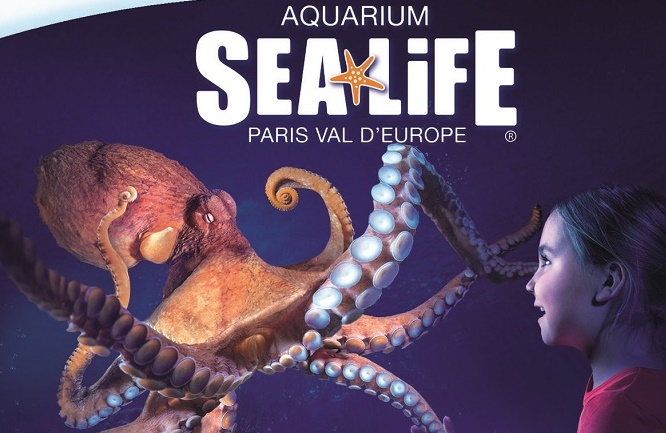 jeu- jevouschouchoute-aquarium-sealife-jvc