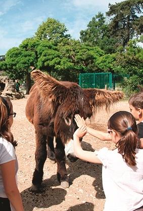 Entr e libre au jardin d 39 acclimatation je vous chouchoute - Centre equestre jardin acclimatation ...
