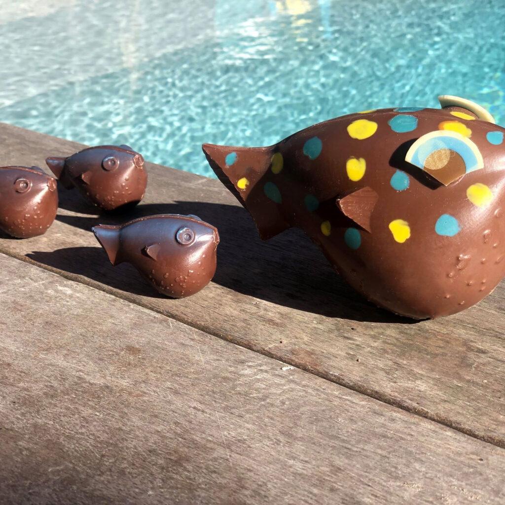 océan de chocolat
